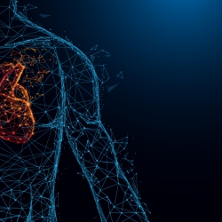 Kwaliteitshandboek Cardiale Pathologie: hartzorgprofessionals op 1 lijn