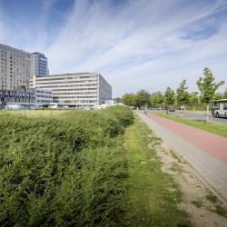 Onderhoudswerken Expresweg N31 - verkeershinder mogelijk van en naar campus Sint-Jan