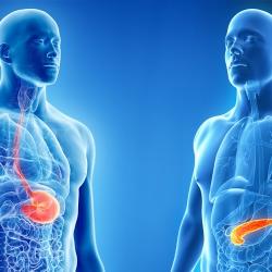 Consortium AZ Delta en AZ Sint-Jan erkend voor complexe slokdarm- en pancreaschirurgie