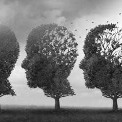 Een persoon met dementie, een 'mens die is'