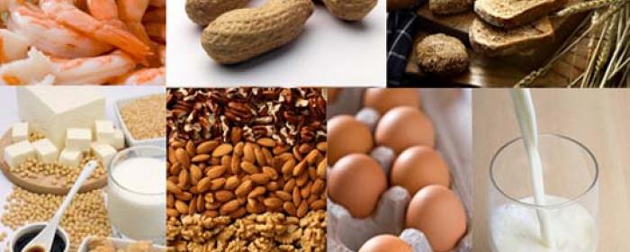 De majeure voedingsallergenen zijn ei, koemelk, soja, tarwe, vis, schaaldieren en noten.